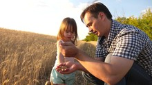 Dad Is An Agronomist And Small...