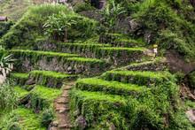 Terrassenfelder, Santo Antao, Kapverden