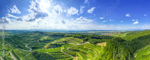 Garden Poster Vineyard aerial view vineyard scenery at Kaiserstuhl Germany