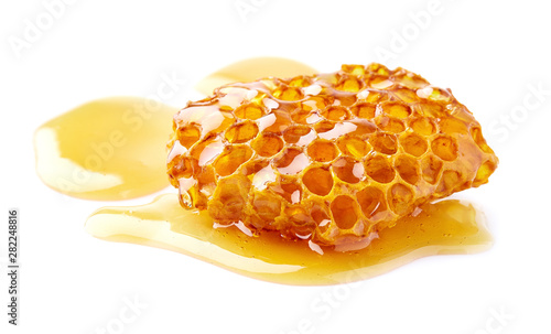 Natural wild honey on white background Fototapeta