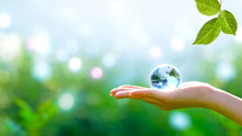 Earth Crystal Blue Glass Globe In Human Hand And Fresh Green Leaf On Blurred Sky And Trees Background. Saving Environment And Clean Green Planet Concept. Card For World Earth Day Concept.