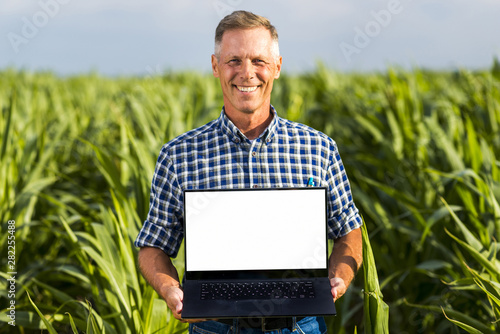 Fototapeta Man with a laptop in a cornfield mock-up obraz