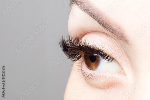 Female eye with beautiful long eyelashes, close-up. Brown ...