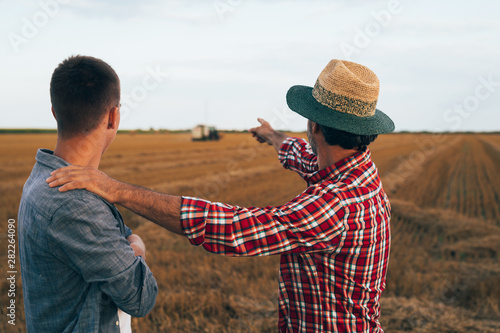 Fototapeta senior farmer with his young colleague on wheat field talking obraz