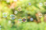 Fototapeta Kawa jest smaczna - soap bubbles on green nature background
