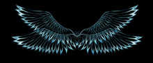 Bird Feathers On Black Background. Original Drawing And Computer Effect.