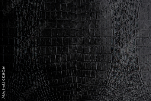 Montage in der Fensternische Crocodile Genuine black Crocodile leather background in dark tone beautiful texture.