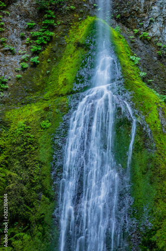 Waterfall in Olympic Peninsula 13