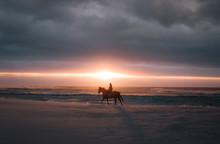 Horse Riding At Sunset On The ...