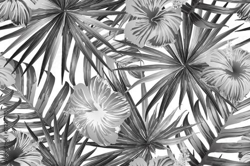 Fototapeta Black white exotic pattern. obraz