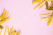 canvas print picture - Yellow spring mimosa flowers on pink background. Top view, flat lay. Copyspace for text