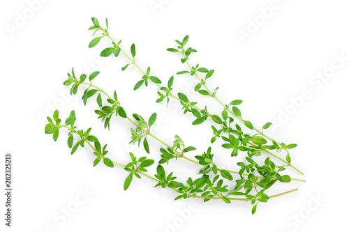 Fototapeta Fresh thyme spice isolated on white background, Top view. Flat lay. obraz