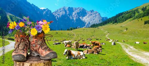 Fototapeta Wanderschuhe mit Blumen in schöner bayerischer Landschaft obraz