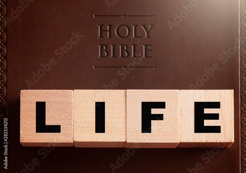 Obraz na plátně Life Spelled in Blocks on a Leather Holy Bible