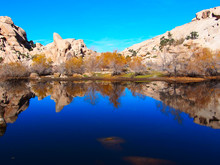 Baker Dam, Joshua Tree Nationa...