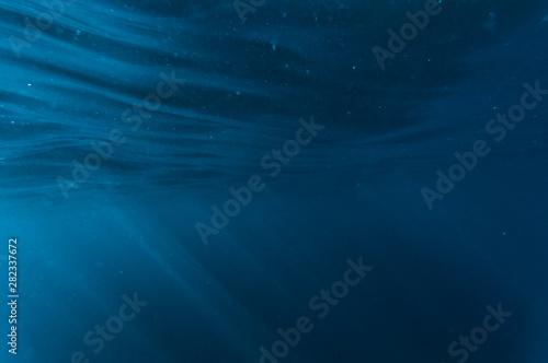 Obraz Underwater - fototapety do salonu