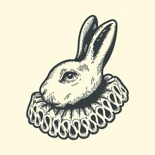 White Rabbit, Dressed As Herald, Alice's Adventures In Wonderland, Vintage Engraving Woodcut Or Linocut Style.