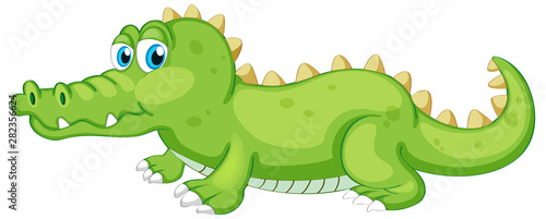 Green crocodile crawling on white background
