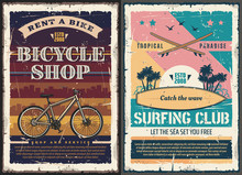 Surfboard, Surfing Board, Beach Wave, Bicycle
