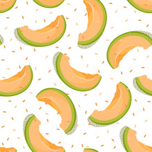 Melon Slice Seamless Pattern On White Background With Seed, Fresh Cantaloupe Melon Pattern Background, Fruit Vector Illustration.
