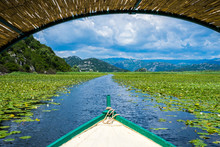 Montenegro, On A Boat On Waterway Through Green Lily Plants Covering Surface Of Skadar Lake, A Popular Tourist Destination And Beautiful Nature Landscape