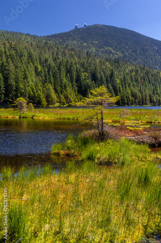 Small lake on great arber, view with great arber behind, copy space Wallpaper Mural