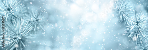 Keuken foto achterwand Lichtblauw Christmas winter snow background with fir branches macro with soft focus and snowfall in blue tones with beautiful bokeh. Banner format, copy space.