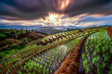 Beautiful Landscape View Of Terraced Paddy Field In Mae-Jam Village On Sunset Time, Chaing Mai Province , Thailand, Asia.