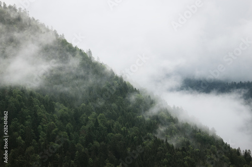 Spoed Foto op Canvas Khaki Berg und Wald in Nebel