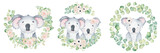 Fototapeta Fototapety na ścianę do pokoju dziecięcego - Koala bear cute animal character watercolor illustration