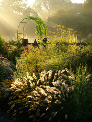Fototapeta Ogrody Vertical image of a country garden in fall (autumn) with flowers, ornamental grasses, an arbor (arch), and fence lit by sunbeams from sunrise