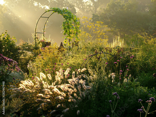 Foto Horizontal image of a country garden in fall (autumn) with flowers, ornamental g