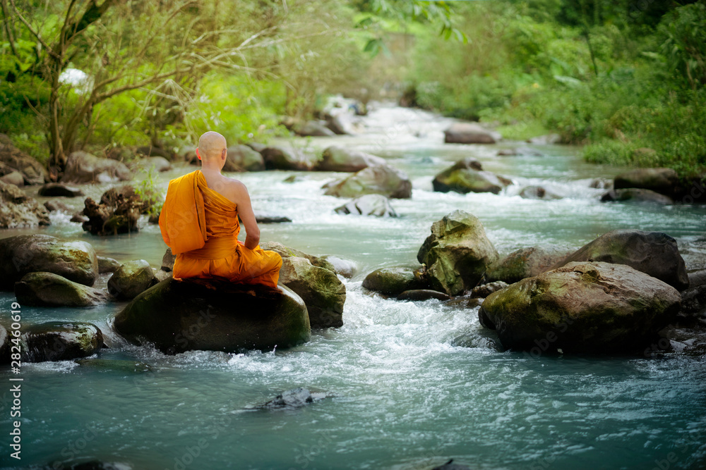 Fototapety, obrazy: Buddha monk practice meditation at waterfall in rain forest