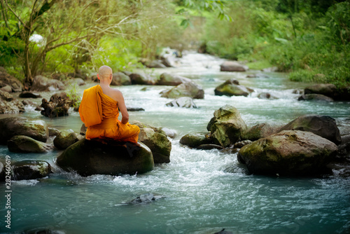 Buddha monk practice meditation at waterfall in rain forest