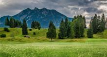 Buckelwiesen Im Karwendel Bei ...