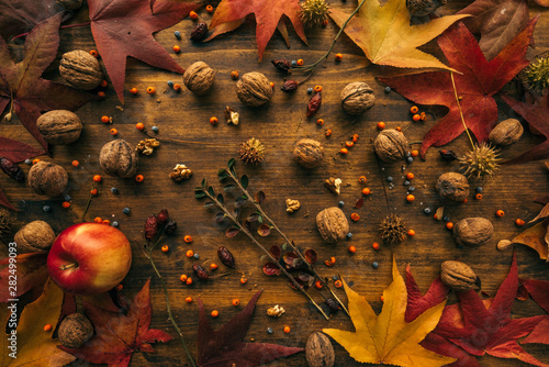 mata magnetyczna Rustic top view flat lay autumn arrangement decoration