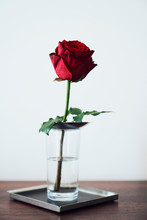 A Single Red Rose In A Glass With Water On A Tray