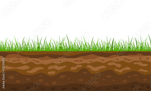 Obraz na płótnie Color Cross Section of Ground with Grass. Vector