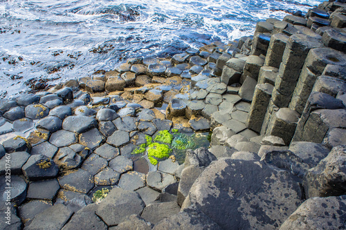 Photo Giant's Causeway Northern Ireland Rocks and Contemplation