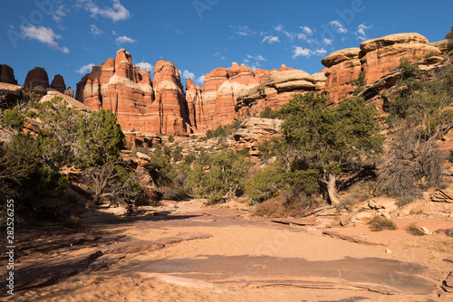 Valokuva Juniper trees and a rock wall, within a canyon wash