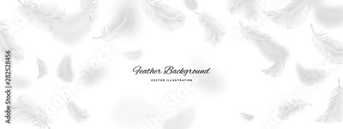 Fotografie, Obraz White Flying Bird Feathers Pattern on Light Background