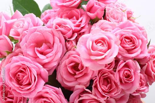 Foto 白背景にピンクの花束