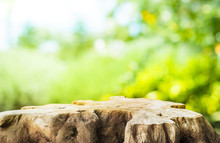 Beautiful Texture Of Old Tree Stump Table Top On Blur Green Garden Farm Background