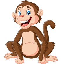 Cute Baby Monkey Sitting On Wh...