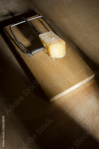 Fototapeta Cheese in a mousetrap