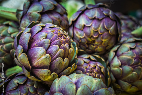 fresh artichokes at farmers market Canvas Print