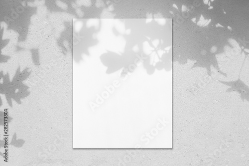 Fototapeta Empty white vertical rectangle poster mockup with soft hawthorn leaves shadows on neutral light grey concrete wall background. Flat lay, top view obraz