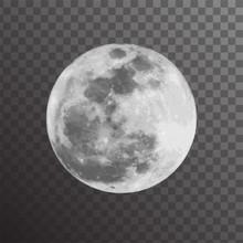 Realistic Vector Illustration Of Gray Full Moon