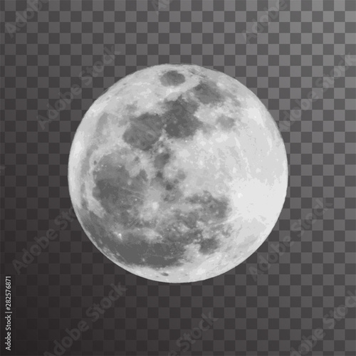 Realistic vector illustration of gray full moon Poster Mural XXL