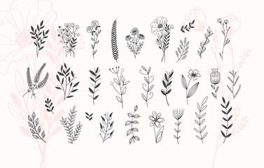 minimalistic flower graphic sketch drawing, trendy tiny tattoo design, floral botanic element